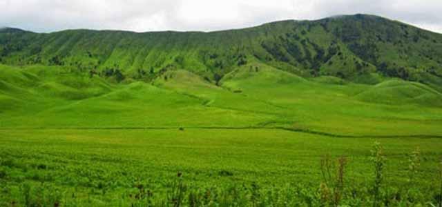 Padang Savana di Gunung Bromo